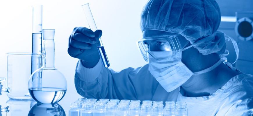 Una proteína podría desactivar la enzima que produce la celiaquía
